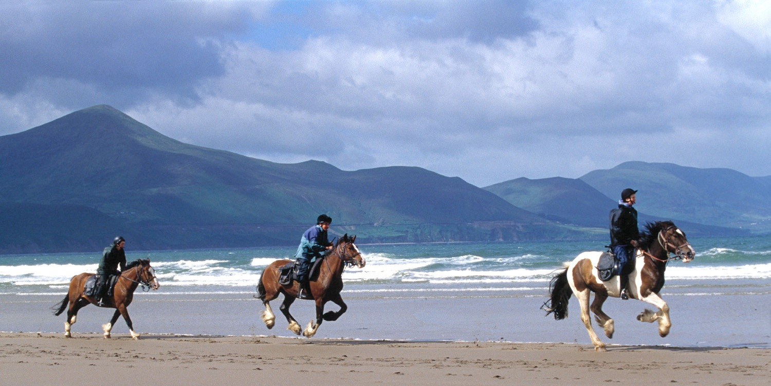 an irish equestrian escape the destination company