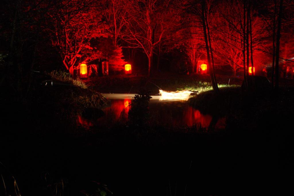 Woodland Light Experience